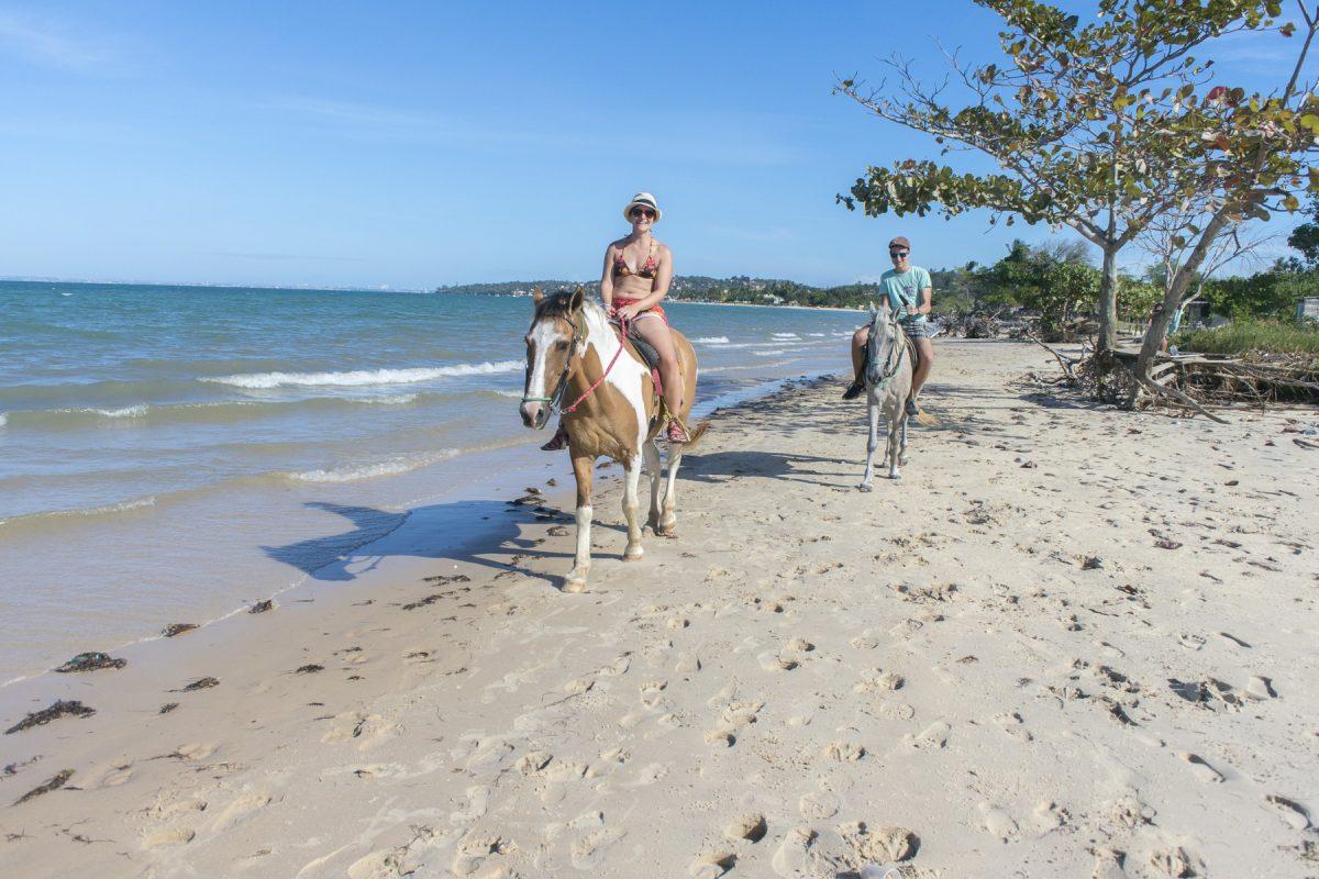 Reiten auf der Ilha de Itaparcia