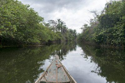 Pantanal-Marimbus-DSC_2008-b-kl