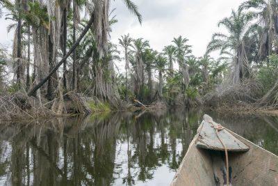 Pantanal-Marimbus-DSC_2010-b-kl