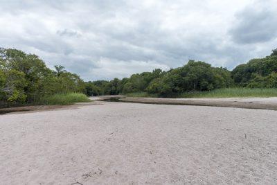 Pantanal-Marimbus-DSC_2053-b-kl
