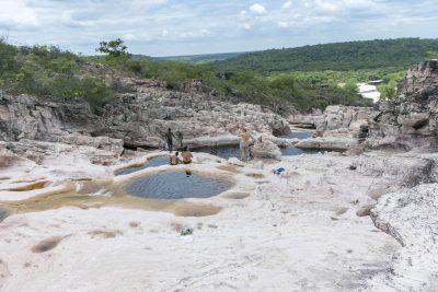 Pantanal-Marimbus-DSC_2079-b-kl
