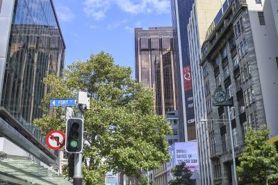 Auckland-DSC_2691-b-kl