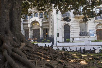 Buenos-Aires-DSC_2573-b-kl