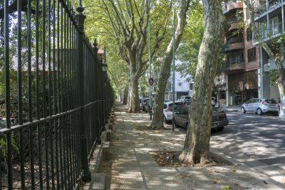 Buenos-Aires-DSC_2605-b-kl