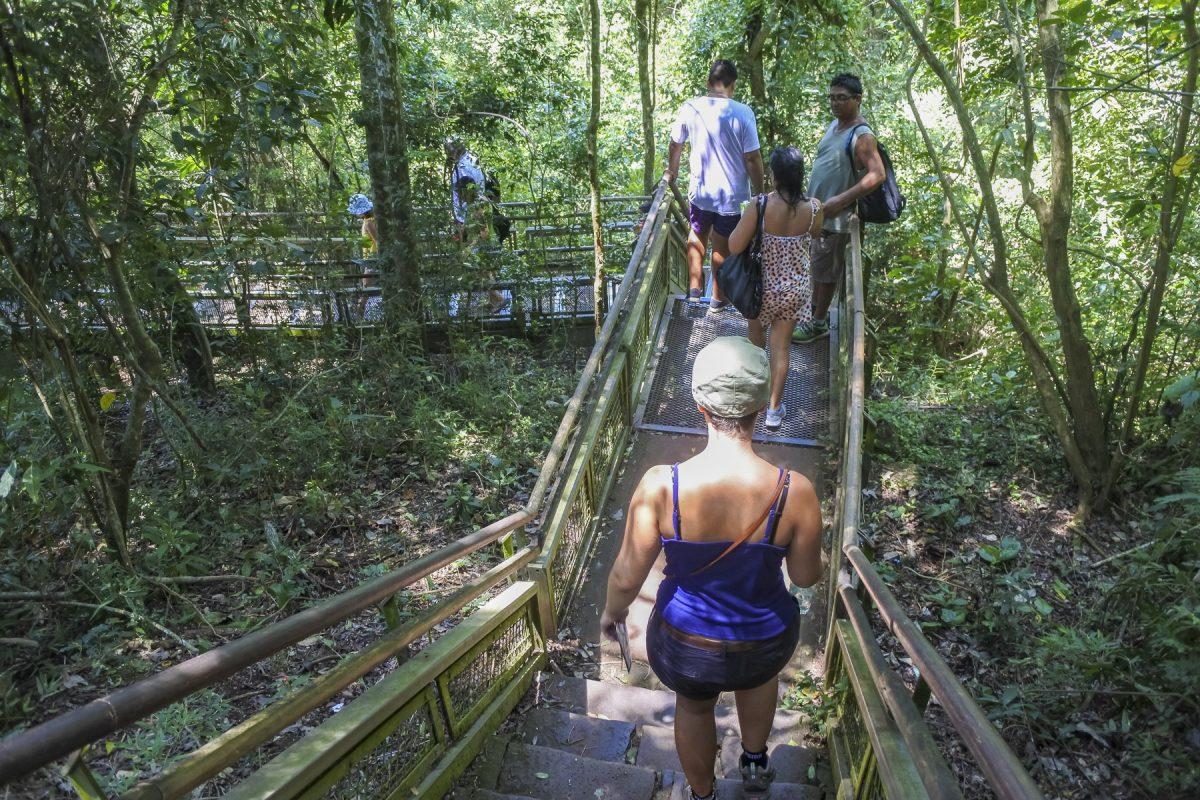 Wanderweg Nationalpark Iguazú