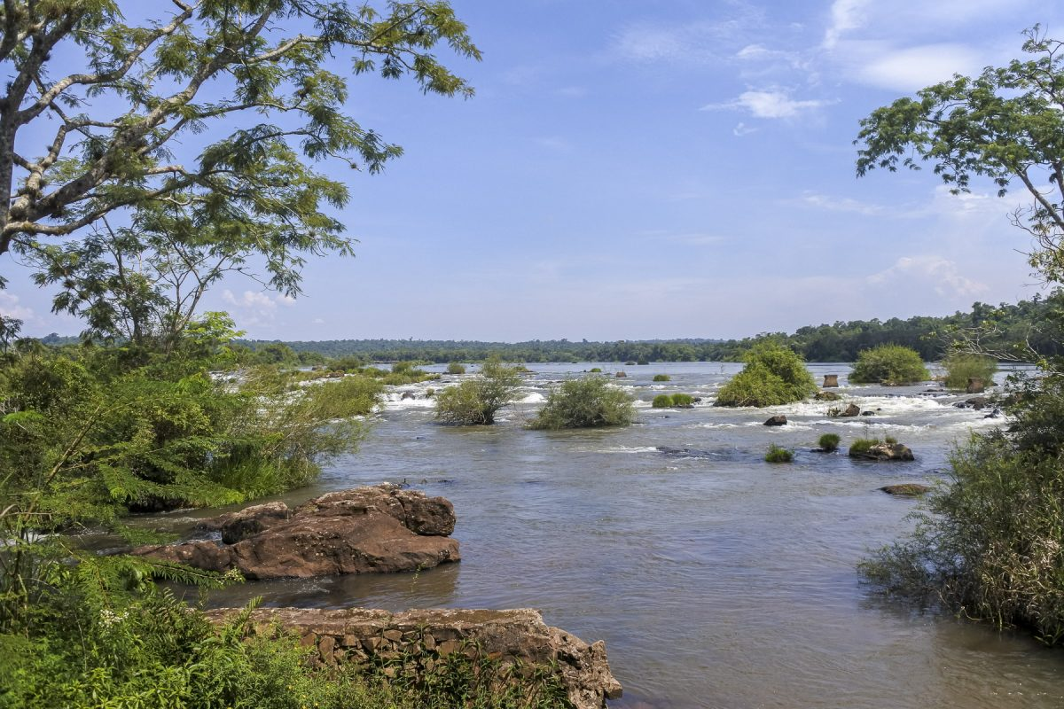 Alles einfach nur Wasser, das dann die Iguazú-Wasserfälle runterfliesst