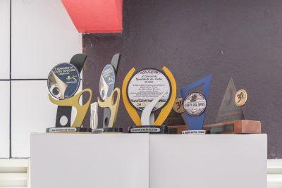 Viele gewonnene Auszeichnungen von APAS