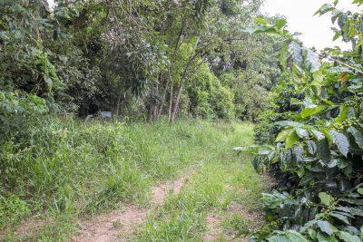 Fazenda Fortaleza