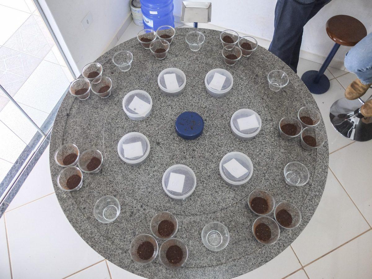 Gemahlener Kaffee fürs Cupping