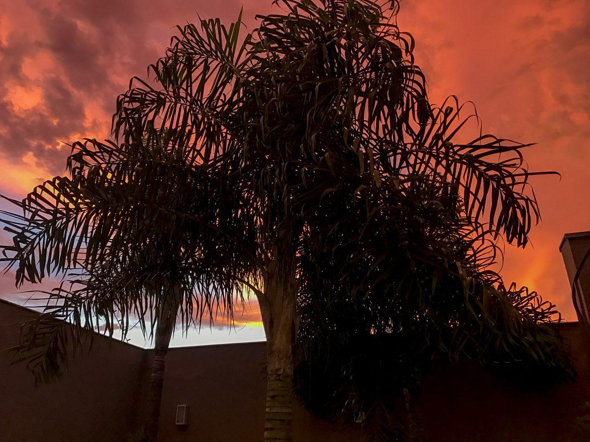 Londrina-IMG_3826-b-kl