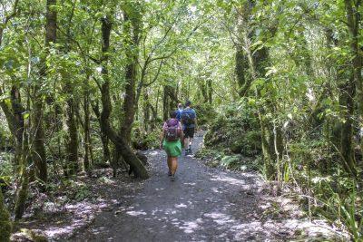 Tongariro-DSC_2870-b-kl