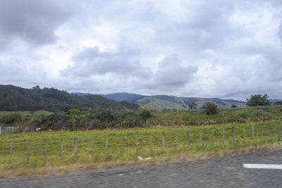 Wellington-DSC_2889-b-kl