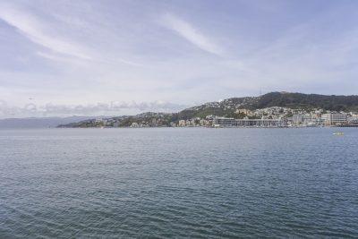 Wellington-DSC_2968-b-kl