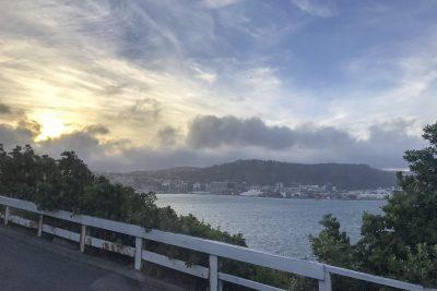 Wellington-IMG_4112-b-kl