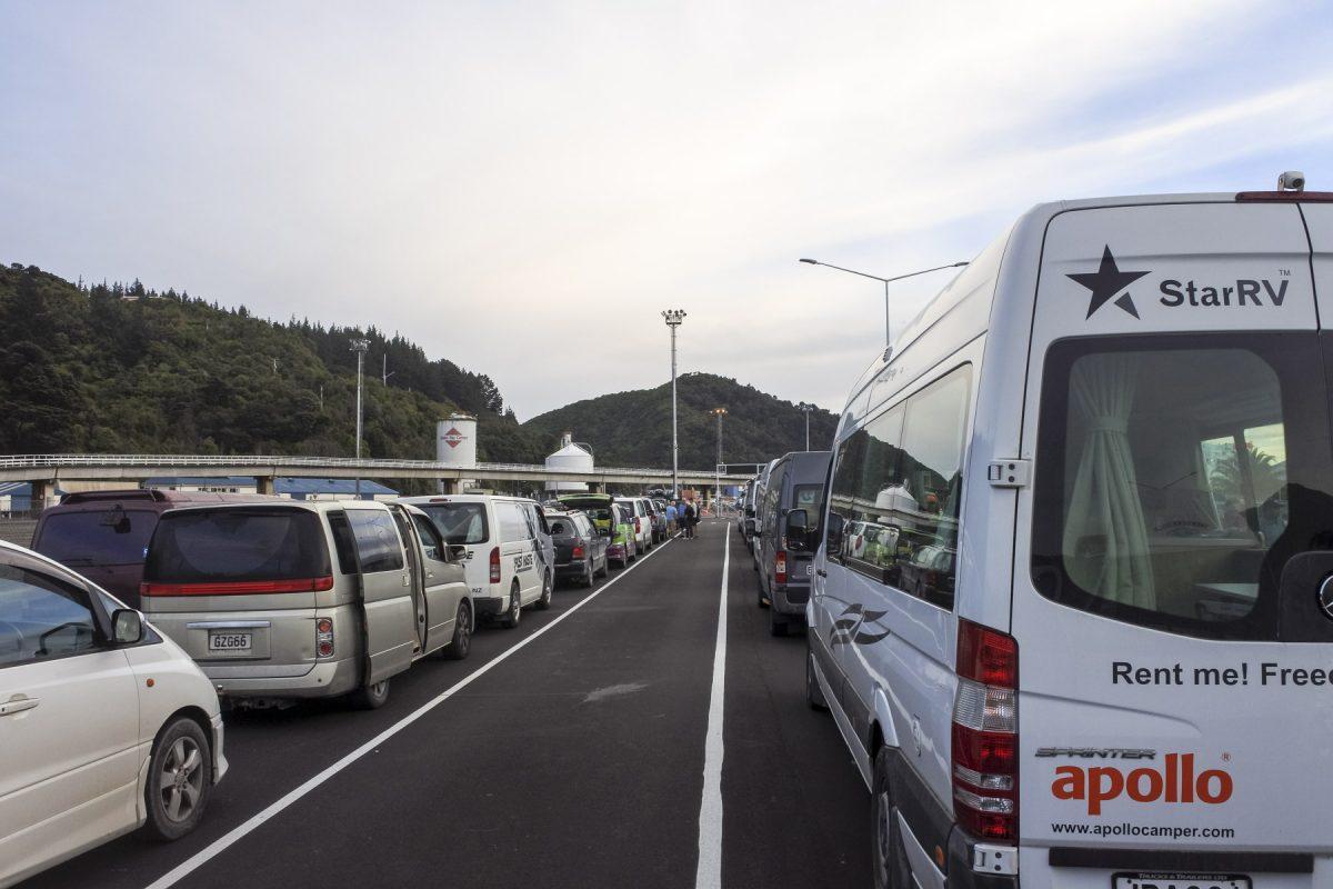 Interislander Ferry Schlange