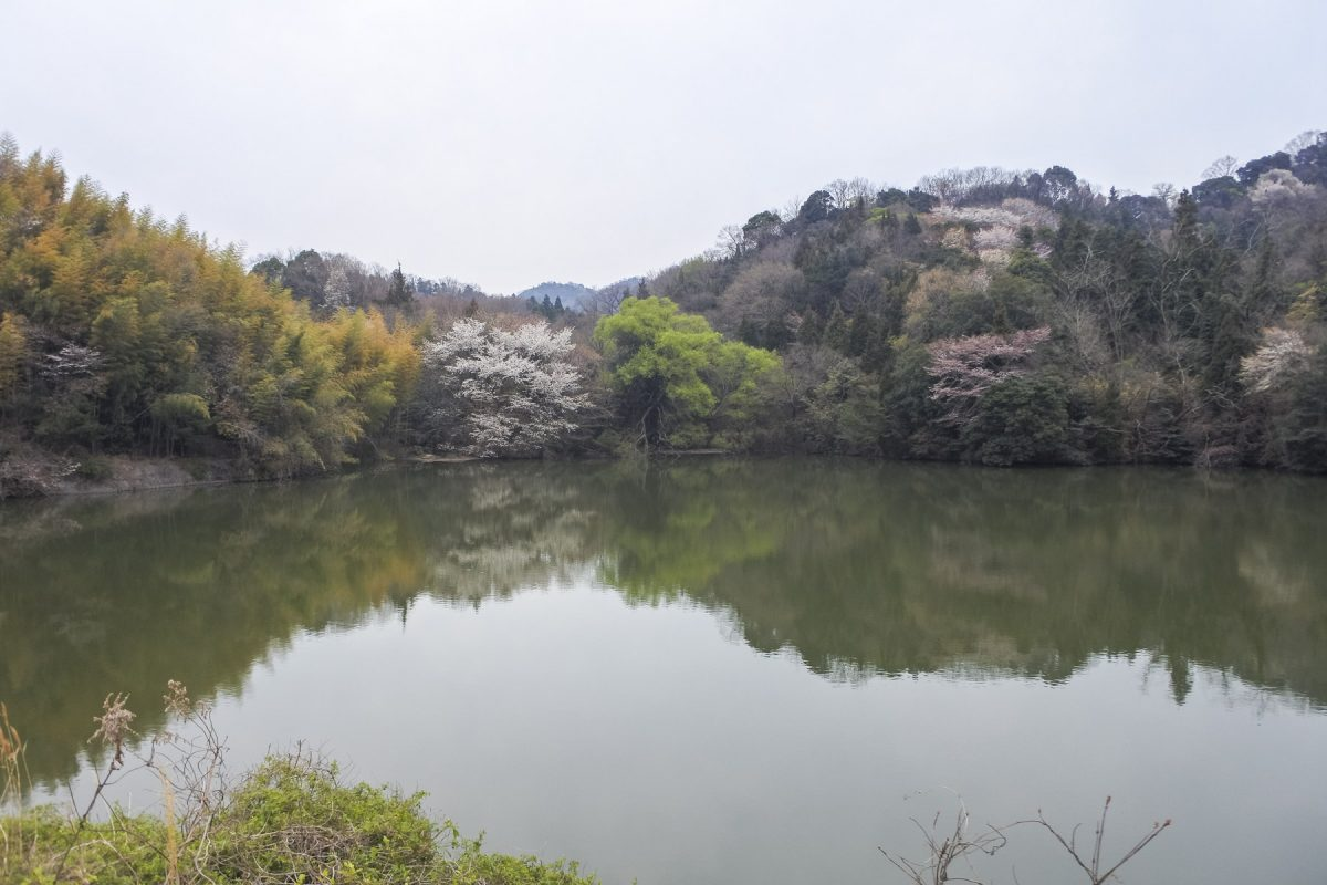 Onomichi-DSC_6485-b-kl