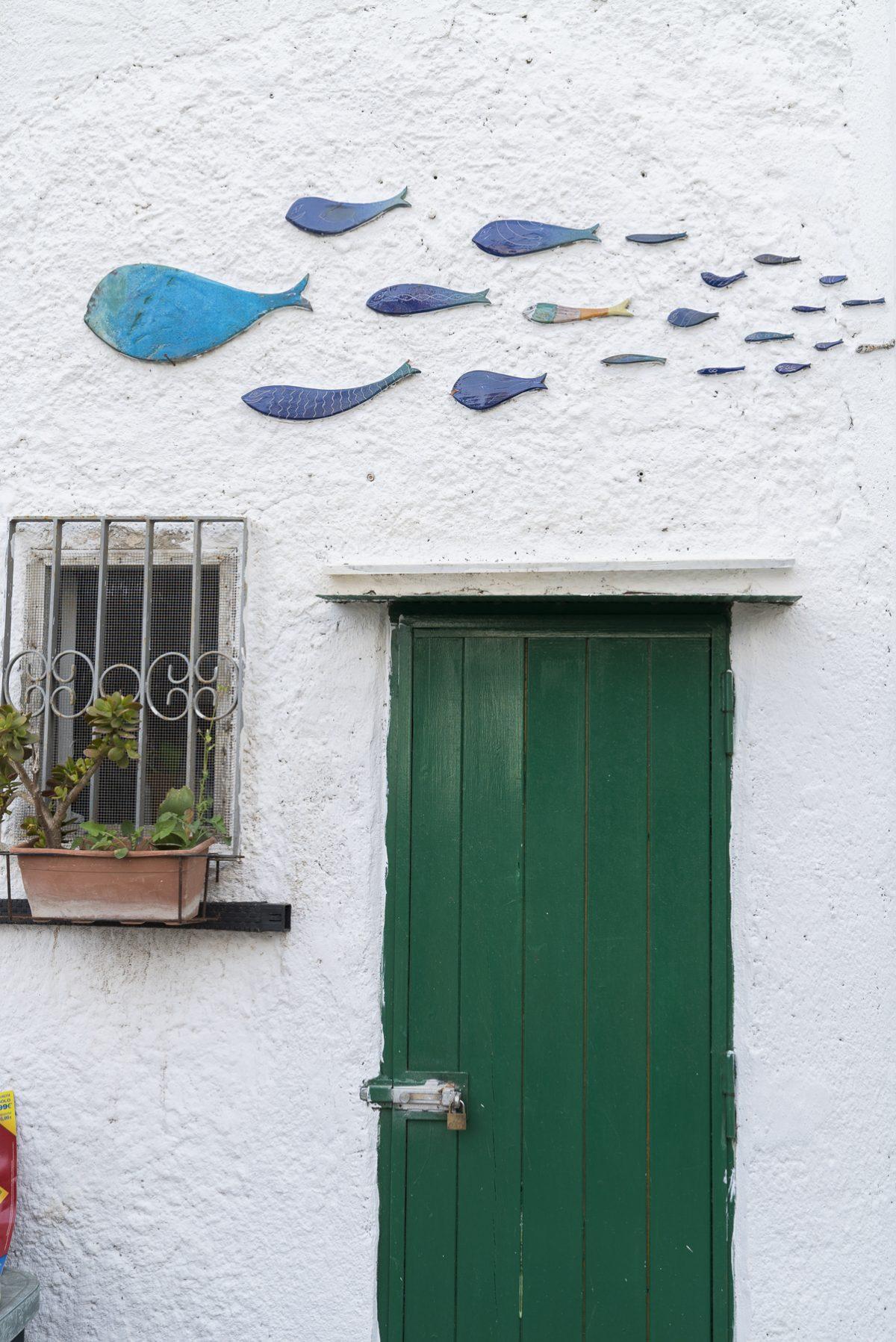 Fische in Erchie, Italien